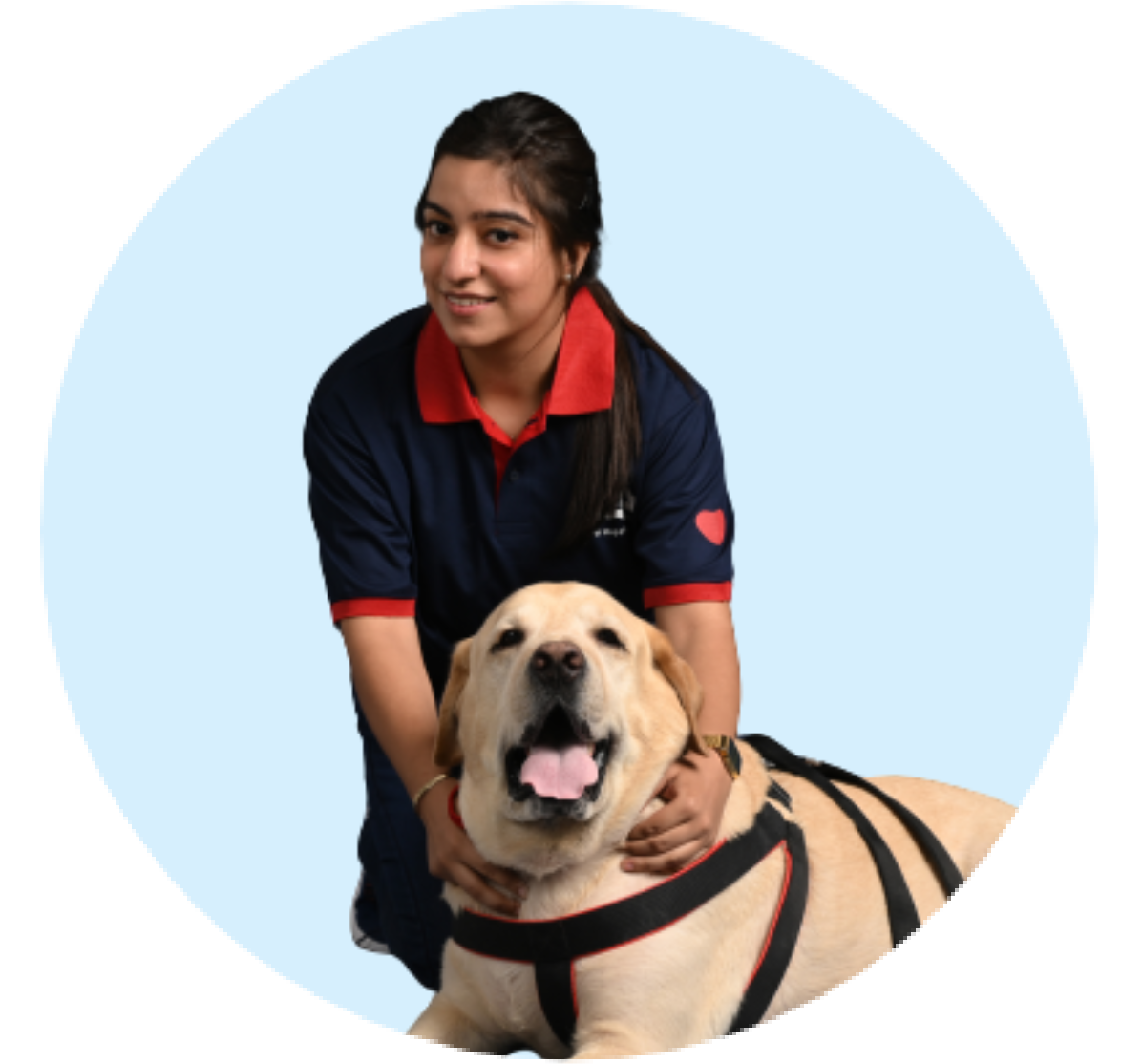 Zigly certified and trained dog groomers